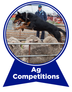 ag-competitions